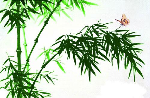 BambooDance